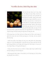 Vài điều cần lưu ý khi trồng dừa xiêm potx