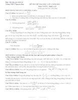 Đề thi thử có đáp án trường THPT Nguyễn Huệ năm 2011 - khối A,B pot
