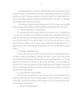 Luận văn : THỰC HIỆN THỦ TỤC HẢI QUAN ĐIỆN TỬ ĐỐI VỚI HÀNG HÓA XUẤT KHẨU, NHẬP KHẨU TẠI CỤC HẢI QUAN THÀNH PHỐ HỒ CHÍ MINH THỰC TRẠNG VÀ GIẢI PHÁP part 6 docx