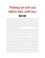 Nguyem Viet Chung -ot11-DHCNTPHCM-Những lợi ích của nhiên liệu sinh học ppsx