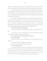 Luận văn : THỰC HIỆN THỦ TỤC HẢI QUAN ĐIỆN TỬ ĐỐI VỚI HÀNG HÓA XUẤT KHẨU, NHẬP KHẨU TẠI CỤC HẢI QUAN THÀNH PHỐ HỒ CHÍ MINH THỰC TRẠNG VÀ GIẢI PHÁP part 10 ppsx