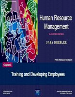 Chapter 8 Training and Developing Employees potx