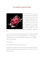 Kỹ thuật bảo quản hoa hồng docx