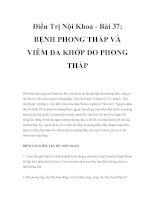 Điều Trị Nội Khoa - Bài 37: BỆNH PHONG THẤP VÀ VIÊM ĐA KHỚP DO PHONG THẤP pot