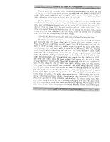 Giáo trình lịch sử kinh tế part 5 potx