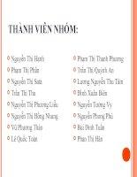 Báo cáo: Vì sao Hồ Chí Minh lựa chọn con đường cách mạng vô sản(1911-1920).Ý nghĩa của sự lựa chọn đó đối với cách mạng Việt Nam pot