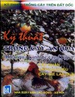 Kỹ Thuật Trồng Cây Ăn Quả Hiệu Quả Cao (Tập 1) - Nguyễn Đình Thiêm phần 1 ppsx