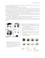 Lý luận về y học hạt nhân part 4 pot