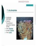 [Slide Bài Giảng Địa Chất Học] Cấu Tạo Địa Chất - Pgs.Ts.Phạm Hữu Sy phần 3 ppt