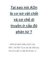 Tại sao nói ADn là cơ sở vật chất và cơ chế di truyền ở cấp độ phân tử pptx