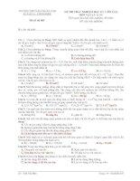 ĐỀ THI TRẮC NGHIỆM HỌC KỲ I (ÔN TẬP) MÔN VẬT LÝ 12 NC Mã đề thi 003 doc