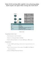Giáo trình hướng dẫn nghiên cứu phương pháp định tuyến các giao thức trong cấu hình ACP p1 pdf