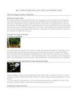 CÔNG NGHỆ SẢN XUẤT TRÀ XANH ĐÓNG CHAI pdf