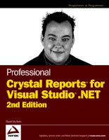Wrox Professional Crystal Reports for Visual Studio NET Second Edition phần 1 pdf
