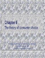 Chương 6 Lý thuyết về sự lựa chọn của người tiêu dùng doc