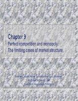 Chương 9 Cạnh tranh hoàn hảo và độc quyền: Các trường hợp hạn chế của cơ cấu thị trường ppsx