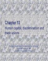 Chương 13 Vốn con người, phân biệt đối xử và công đoàn pot