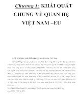 Chương 1: KHÁI QUÁT CHUNG VỀ QUAN HỆ VIỆT NAM –EU _P2 potx