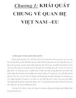 Chương 1: KHÁI QUÁT CHUNG VỀ QUAN HỆ VIỆT NAM –EU _P4 docx