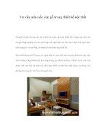 Tư vấn màu sắc sàn gỗ trong thiết kế nội thất pps