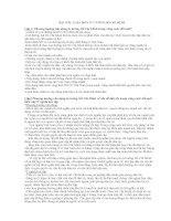 Bìa tiểu luận môn tư tưởng Hồ Chí Minh