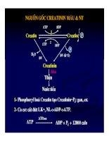 Bài giảng sinh hóa - Máu và dịch não part 6 docx