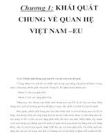 Chương 1: KHÁI QUÁT CHUNG VỀ QUAN HỆ VIỆT NAM –EU _P3 ppt