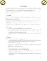 Giáo trình hướng dẫn cách dùng thuốc men Bisepton để chữa trị nhiễm khuẩn đường ruột cho gia súc phần 10 pdf