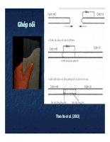 Bài giảng PHƯƠNG PHÁP GIA TẢI TRƯỚC SỬ DỤNG CÁC VẬT THOÁT NƯỚC ĐỨNG ĐÚC SẴN part 6 ppsx