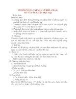 Giáo án Công Dân lớp 8: PHÒNG NGỪA TAI NẠN VŨ KHÍ, CHÁY, NỔ VÀ CÁC CHẤT ĐỘC HẠI doc