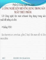 PHẦN 2: CÔNG NGHỆ LÊN MEN ỨNG DỤNG TRONG SẢN XUẤT pdf