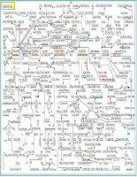sơ đồ chuyển đổi hóa học hữu cơ