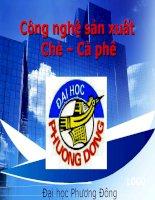 tinh hinh tieu thu che tren the gioi và Viet Nam nam 2011 ppsx