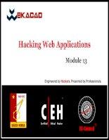 CEHv8 module 13   hacking web applications