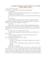 Giáo án Lịch Sử lớp 10: SỰ HÌNH THÀNH VÀ PHÁT TRIỂN CÁC VƯƠNG QUỐC ĐÔNG NAM Á pdf