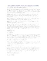 Bài 1: Giới thiệu chung về thế giới sống của các cấp tổ chức của cơ thể sống I ppt