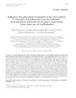 Báo cáo khoa học: nfluence des phosphates naturels et des mycorhizes à vésicules et à arbuscules sur la croissance et la nutrition minérale de Zizyphus mauritiana Lam. dans un sol à pH alcalin a Tiby Guissou