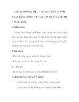 Giáo án sinh học lớp 7 - Bài 28: THỰC HÀNH XEM BĂNG HÌNH VỀ TẬP TÍNH CỦA SÂU BỌ pot