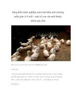 Sáng kiến kinh nghiệm môn tìm hiểu môi trường mẫu giáo 4-5 tuổi – một số con vịt nuôi thuộc nhóm gia cầm pot