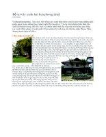 Bố trí cây xanh hài hoà phong thuỷ pdf