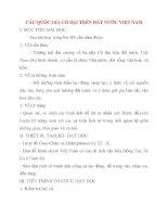 Giáo án Lịch Sử lớp 10: CÁC QUỐC GIA CỔ ĐẠI TRÊN ĐẤT NƯỚC VIỆT NAM pps