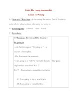 Giáo án Tiếng Anh lớp 8: Unit 6 The young pioneers club Lesson 5 : Writing pot
