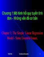 Chương 1: Mô hình hồi quy tuyến tính đơn - những vấn đề cơ bản pot