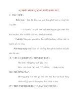 Giáo án Sinh Học lớp 12 Ban Tự Nhiên: SỰ PHÁT SINH SỰ SỐNG TRÊN TRÁI ĐẤT. pps