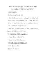 Giáo án sinh học lớp 6 - Bài 47: THỰC VẬT BẢO VỆ ĐẤT VÀ NGUỒN NƯỚC docx