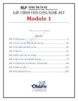 lập trình viên công nghệ.net module 1