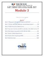 lập trình viên công nghệ  net module 3