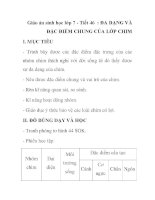Giáo án sinh học lớp 7 - Tiết 46 : ĐA DẠNG VÀ ĐẶC ĐIỂM CHUNG CỦA LỚP CHIM ppt
