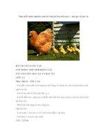 Sáng kiến kinh nghiệm môn kể chuyện lớp mẫu giáo – bạn gà và bạn vịt pptx