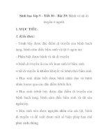 Sinh học lớp 9 - Tiết 30 - Bài 29: Bệnh và tật di truyền ở người pdf